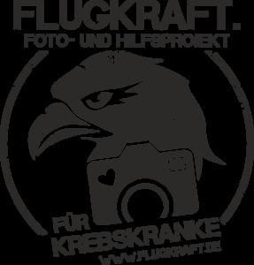 Logo von Flugkraft