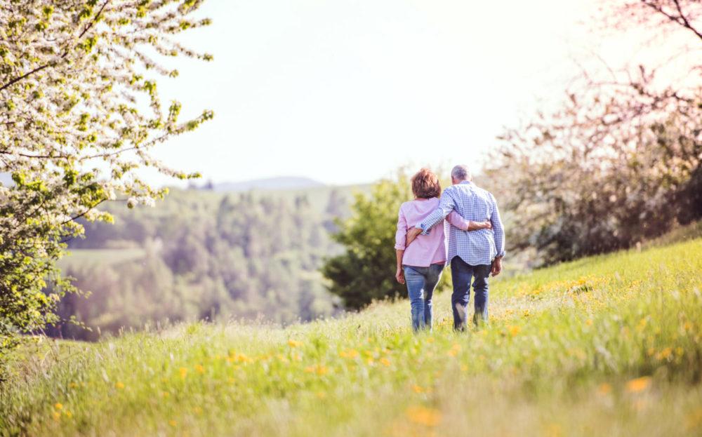 Rückenansicht eines älteren Paares, das Arm in Arm auf einer Frühlingswiese spaziert